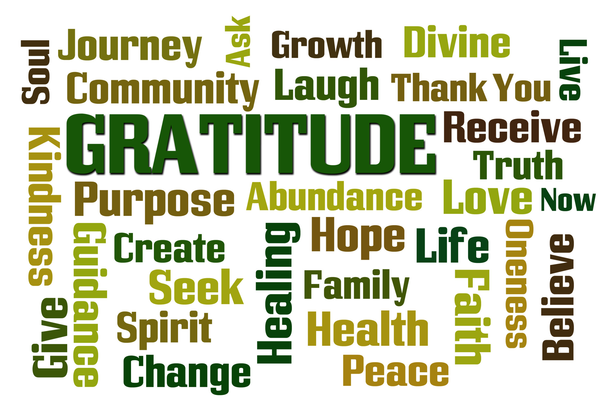 Choose 12 Days Of Gratitude This Holiday Season